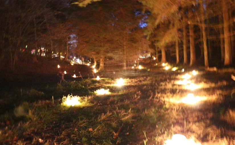 Sankt Martinsfest 2015 im Waldkindergarten Übersee